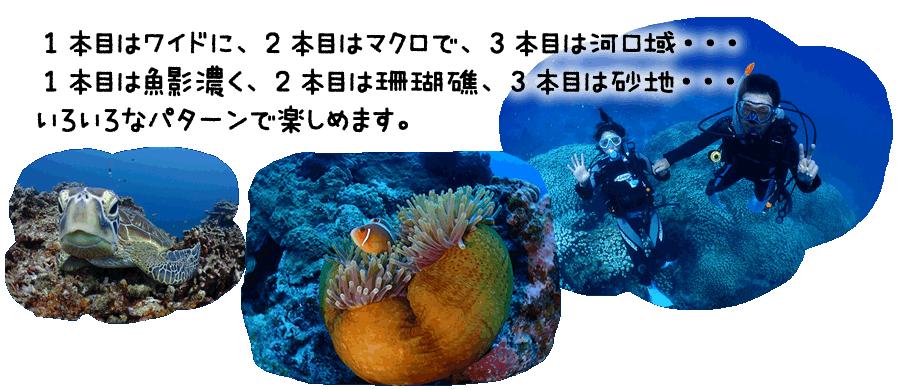 1本目はワイドに、2本目はマクロで、3本目は河口域・・・ 1本目は魚影濃く、2本目は珊瑚礁、3本目は砂地・・・ いろいろなパターンで楽しめます。