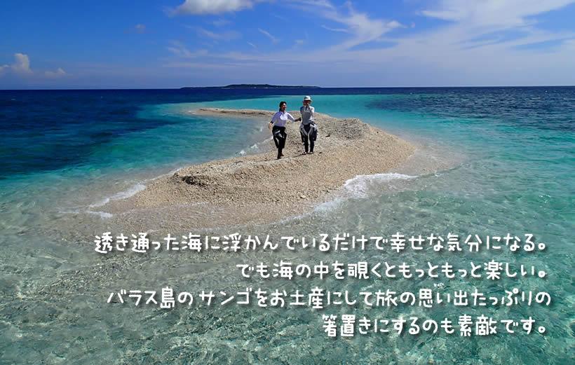 透き通った海に浮かんでいるだけで幸せな気分になる。 でも海の中を覗くともっともっと楽しい。 バラス島のサンゴをお土産にして旅の思い出たっぷりの 箸置きにするのも素敵です。