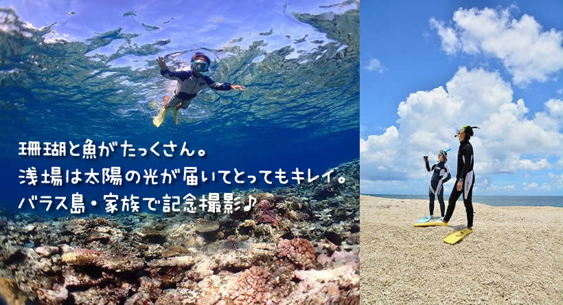 珊瑚と魚がたっくさん。 浅場は太陽の光が届いてとってもキレイ。 バラス島・家族で記念撮影♪