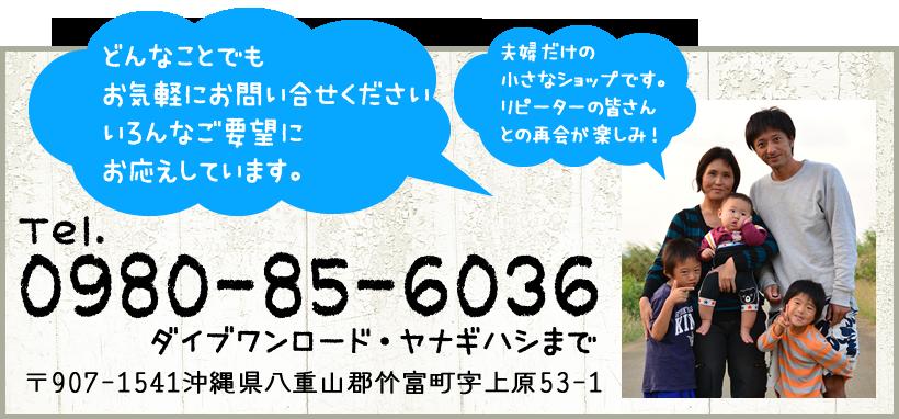 0980-85-6036 ダイブワンロード・ヤナギハシまで